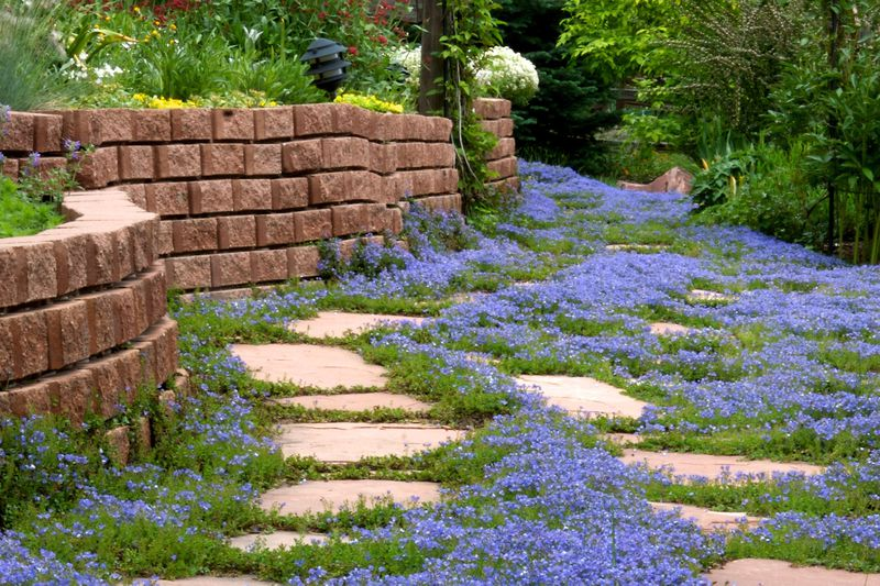 Stained retaining wall